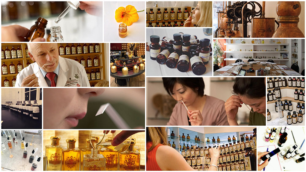 creation de parfum